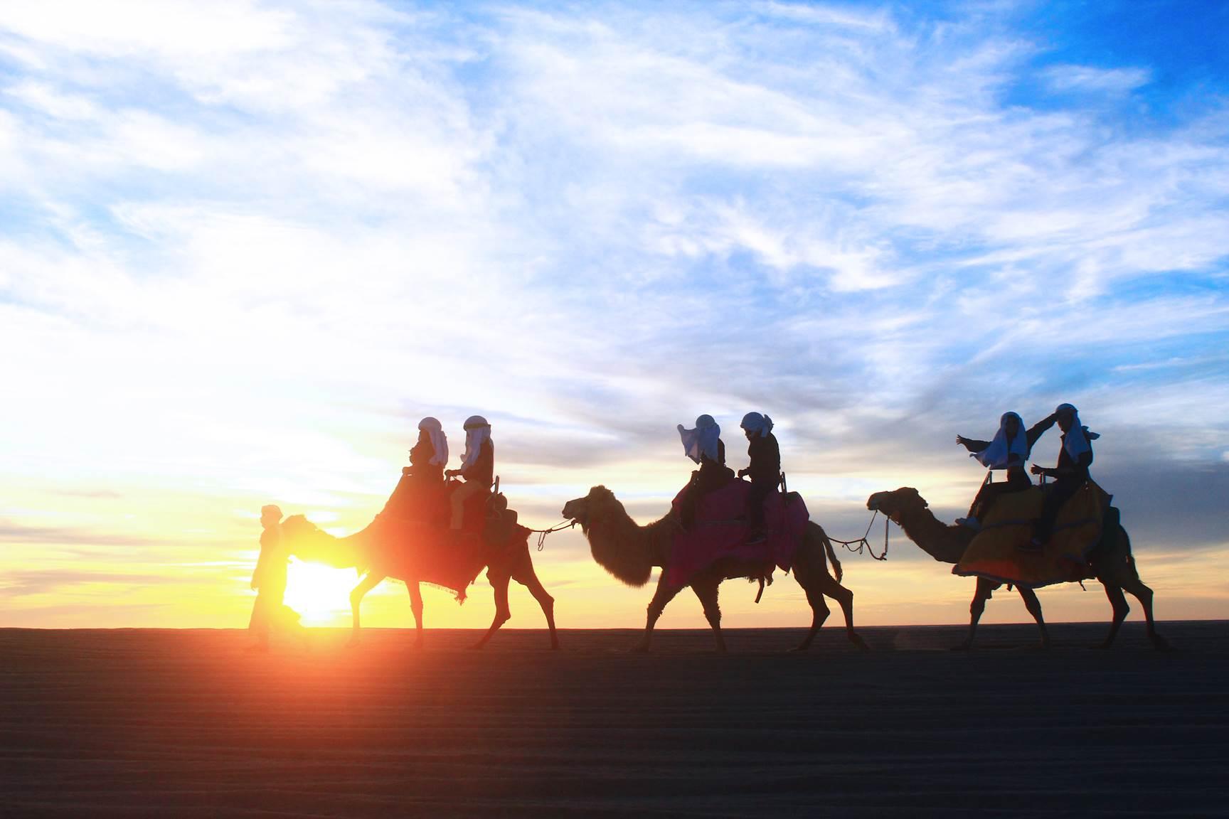 Camel Ride & Safari